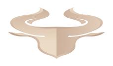 金牛(TauCoin)