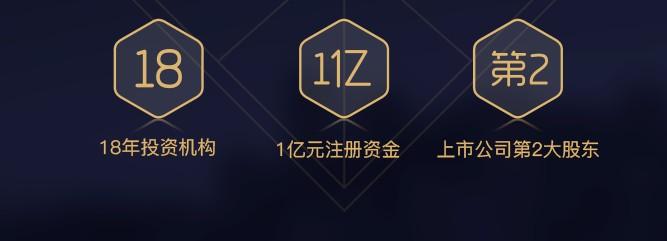 鑫鼎盛期货官网