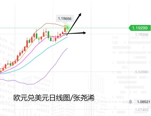 张尧浠:美元日内止跌力度有限、欧元目标可看至1.22